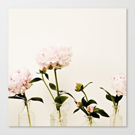 Four Friends Peony Flowers Canvas Print