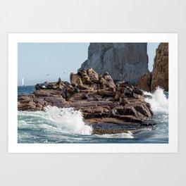 en las rocas Art Print