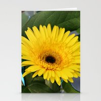 you are my sunshine Stationery Cards featuring Sunshine  by IowaShots