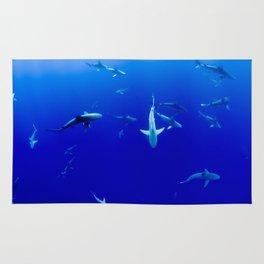 Sharks! Rug