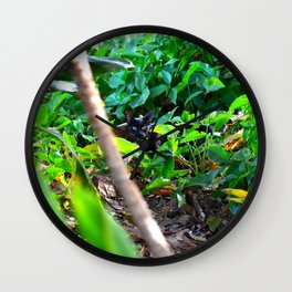 Feral Cat Wall Clock