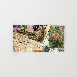Botanical studies Hand & Bath Towel