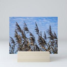 Reeds and Sky Mini Art Print