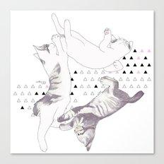 cat triangle  Canvas Print