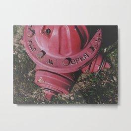 Fire Hydrant Metal Print