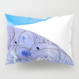 Encounter #2 Pillow Sham