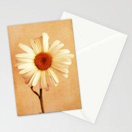 Caramel Daisy Stationery Cards