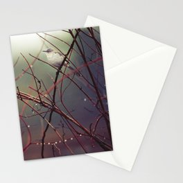 Bird and Red Branches Stationery Cards