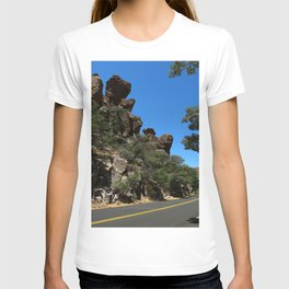 Scenic Bonita Canyon Road T-shirt