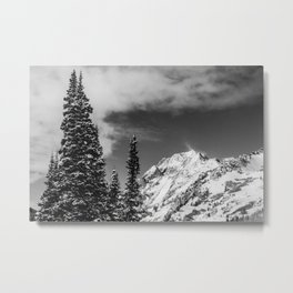 Trees Taller than the Highest Peak Metal Print