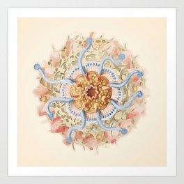 Ernst Haeckel Revisited Art Print