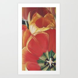 Tulips One Heart Art Print