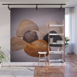 Different color shell Wall Mural