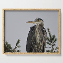 Tree Top Heron at Dawson Creek Park Serving Tray