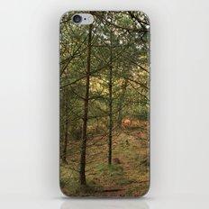 Woods of Memory iPhone & iPod Skin