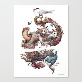 Driftwood (no labels) Canvas Print