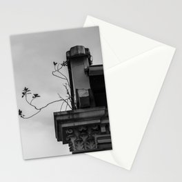 : roots : Stationery Cards