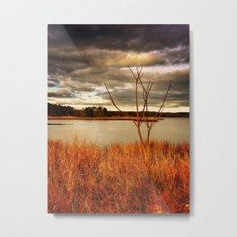 Fall Stalk Metal Print