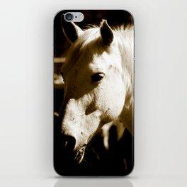 White Horse-Sepia iPhone Skin
