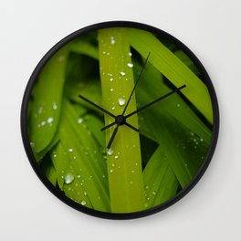 Shot with Simplicity Wall Clock