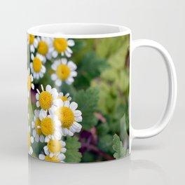 Feverfew Coffee Mug