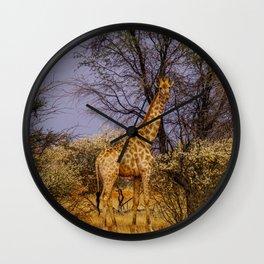 Giraffe in Namibia│Kalahari Desert, Namibia (Africa) | Colorful Travel Photography Wall Clock