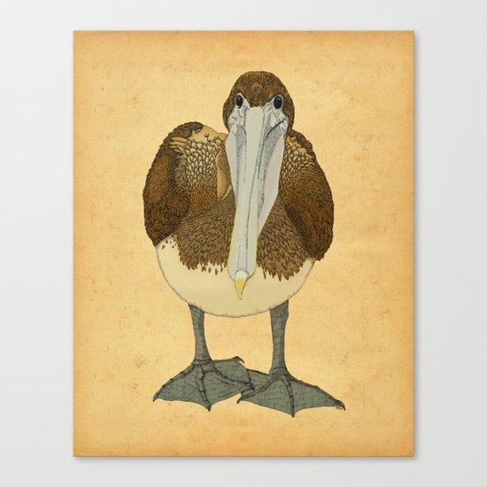 Ploffskin Pluffskin Pelican Jee Canvas Print