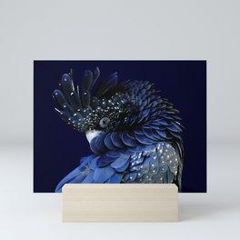 Australian Red-Tailed Black Cockatoo in Blue Mini Art Print