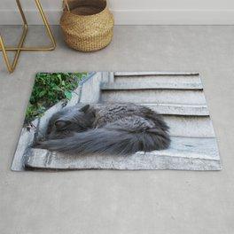 Ash Cat. Rug