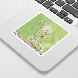 Nature simplicity Sticker