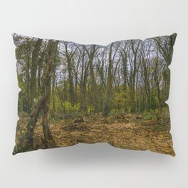 Autumn in the forest Pillow Sham