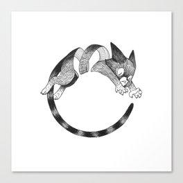 Cat Loop Canvas Print