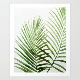 Fresh Palm Fronds Art Print