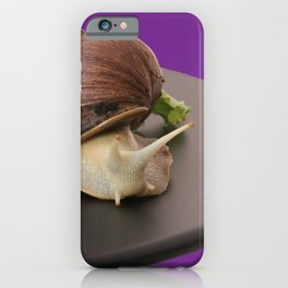 Giant african land snail iPhone Case