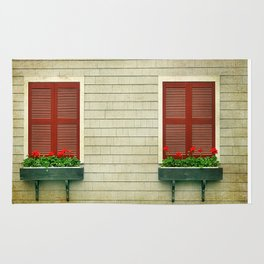 Flowers in the Window Rug