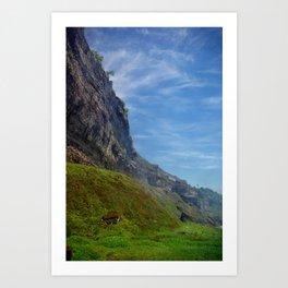 Misty Cliffs Art Print