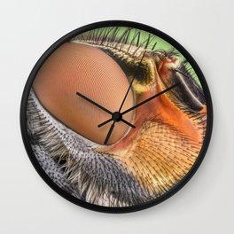 Insect III Wall Clock