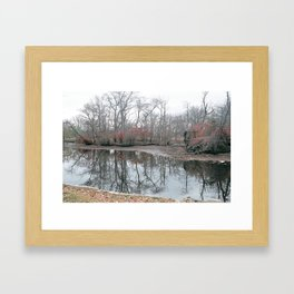 Just some reflections Framed Art Print