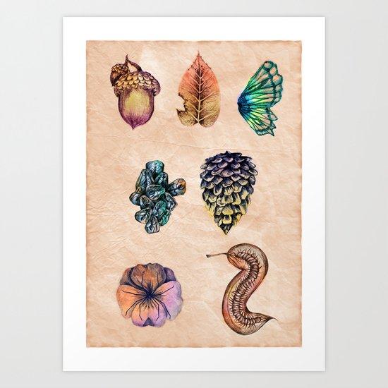 Nature set Art Print