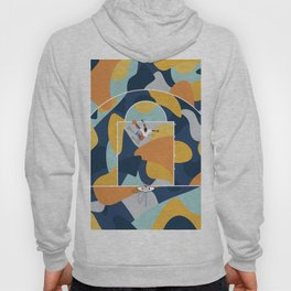 Basketball Abstraction  Hoody