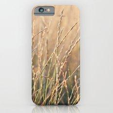 Field in the Sun iPhone 6s Slim Case