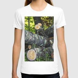 Cut Timber T-shirt