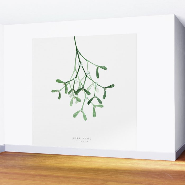 Watercolor mistletoe illustration Wall Mural