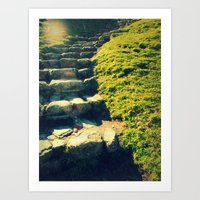 Finding Your Way Art Print