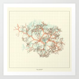 Arbor Ludi: Anand Art Print