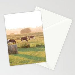 Cows in Brittany Stationery Cards