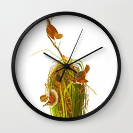 Marsh Wren Wall Clock