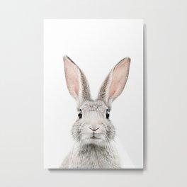 Bunny face Metal Print