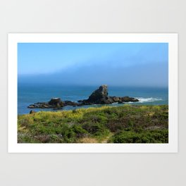 Rocks In The Sea At Pigeon Point Art Print