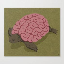 Tortoise brain Canvas Print
